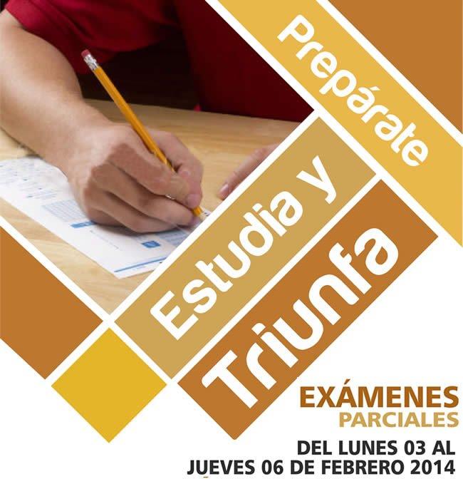 examen_parcial_articulo
