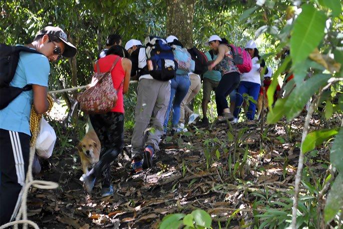 web - Centro de Liderazgo -Tracking 3