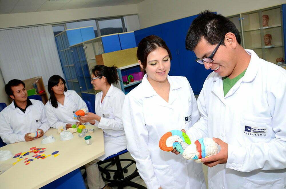 Laboratorio de Psicología Experimental y Neurociencia