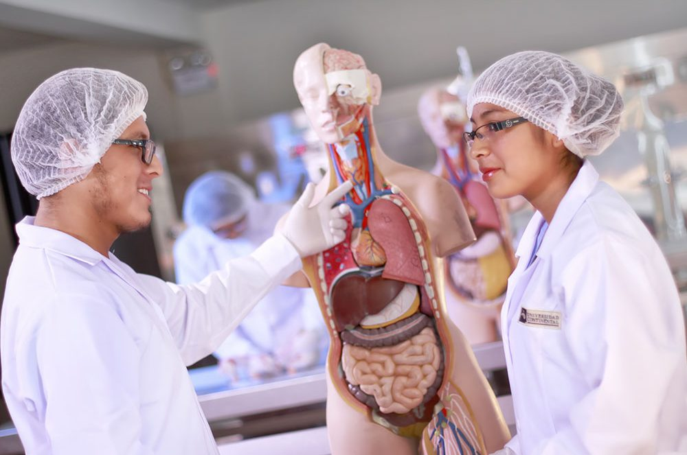 Laboratorio de Salud - Simuladores anatómicos de medicina