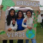 Actividades Brigada Verde